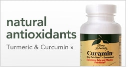 natural antioxidants Turmeric and Curcumin