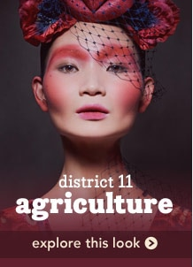 district 11 agriculture