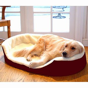 Majestic Pet Products Lounger Pet Bed, Large, 36x24 inch, Burgundy, 1 ea